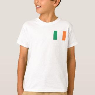 Camiseta Bandeira nacional do mundo de Ireland