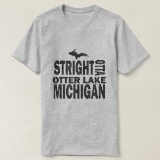 Camiseta Básico cinzento engraçado do Lago Michigan da