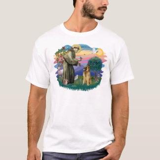Camiseta Belga Tervuren