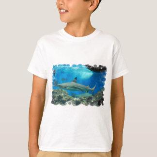 Camiseta black-tipped-shark-1.jpg