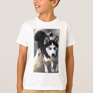 Camiseta Blizzy pequeno bonito!