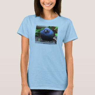 Camiseta Bluebird da infelicidade