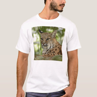 Camiseta BobcatBCR032