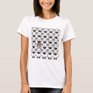 Camiseta Border collie nos carneiros