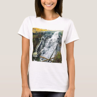Camiseta Brandywine cai parque nacional Ohio de Cuyahogo