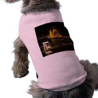 Camiseta Budapest na noite
