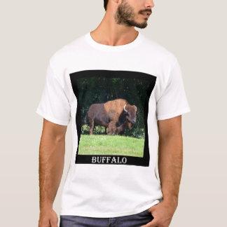 Camiseta Búfalo (bisonte) Kansas, Oklahoma, Wyoming