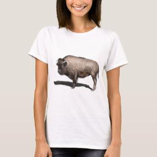 Camiseta Búfalo, Bubalus