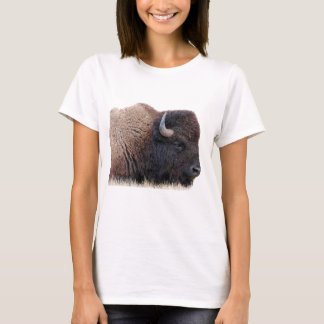 Camiseta Búfalo do bisonte americano
