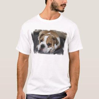 Camiseta bulldog-26.jpg