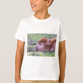 Camiseta Cabeça da vitela escocesa recém-nascida marrom do