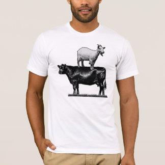 Camiseta Cabra no t-shirt da vaca