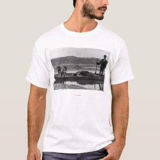 Camiseta Caçador na canoa com couros crus e cães Alaska