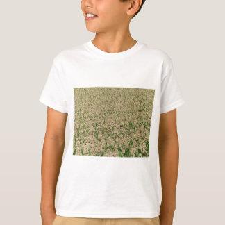Camiseta Campo do milho do milho verde na fase inicial