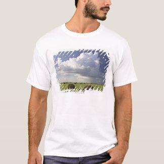Camiseta Campos da colheita com nuvens de tempestade,