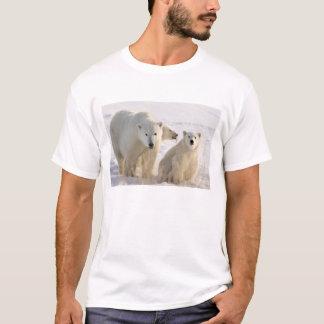 Camiseta Canadá, Manitoba, baía de Hudson, Churchill. 5