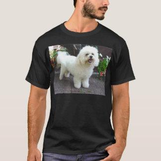 Camiseta Cão de Bichon Frisé