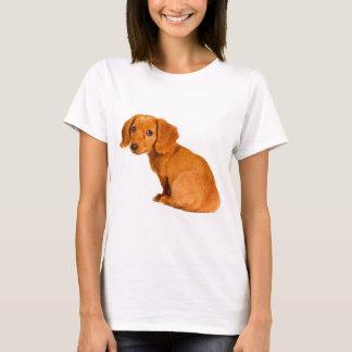 Camiseta Cão de filhote de cachorro bonito do Dachshund