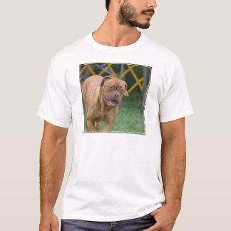 Camiseta Cão francês do Mastiff