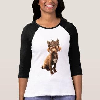 Camiseta Cão real