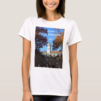 Camiseta Capitólio, Williamsburg colonial