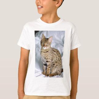 Camiseta Cara bonito bonita do gato de Bengal