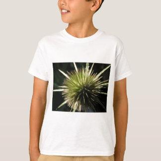 Camiseta Carda na exposição