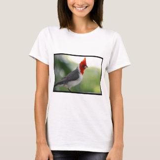 Camiseta Cardeal brasileiro