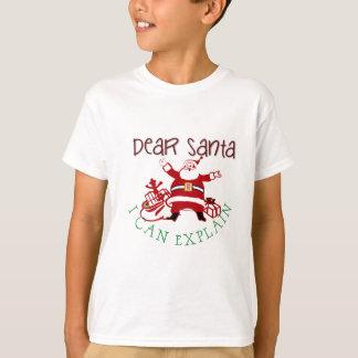 Camiseta Caro papai noel eu posso explicar o T dos miúdos