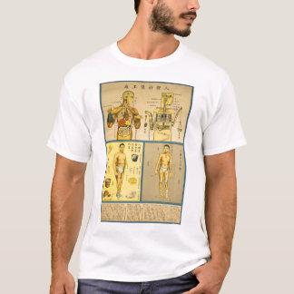 Camiseta Carta chinesa da anatomia da saúde do vintage