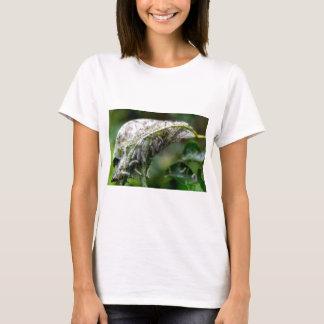 Camiseta Caterpillar choca a queda da chuva do casulo