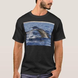 Camiseta Cauda da baleia