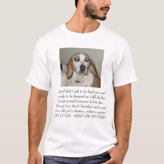 Camiseta Cecelia