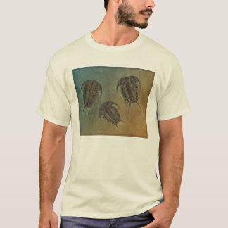 Camiseta Ceraurus e Leviceraurus