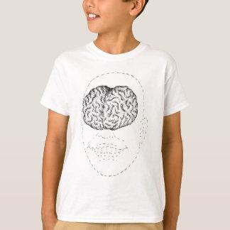 Camiseta Cérebro visível, homem invisível - t-shirt