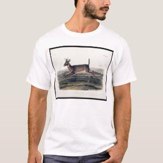 Camiseta Cervos de cauda longa