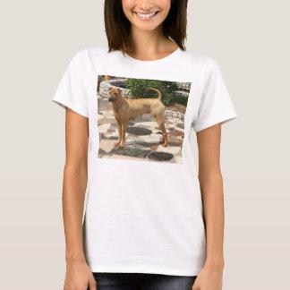 Camiseta cheio shar do pei
