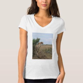 Camiseta Chita da mãe com filhotes