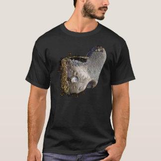 Camiseta Cidade asteróide 2025 2036