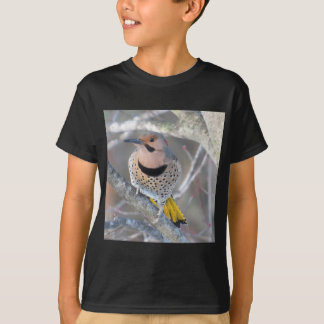Camiseta Cintilação comum