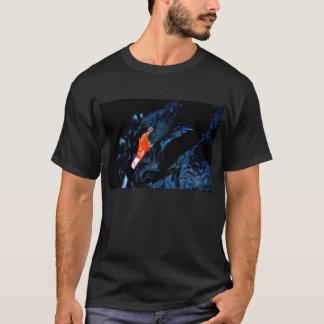 Camiseta Cisne preta - t-shirt