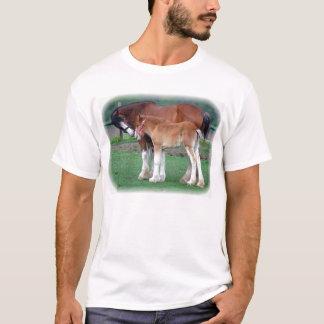 Camiseta Clydesdale e potro