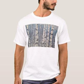 Camiseta Código Morse das árvores de vidoeiro