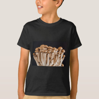 Camiseta cogumelo