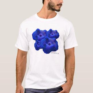 Camiseta Cogumelo azul, sp de Actinodiscus. coral