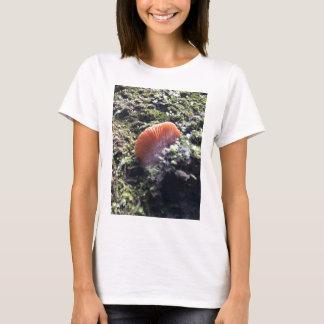 Camiseta Cogumelo tormentoso da explosão dos Mycelia
