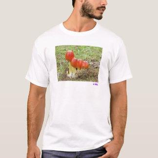 Camiseta Cogumelos