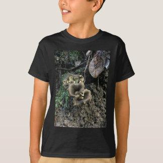 Camiseta Cogumelos de florescência