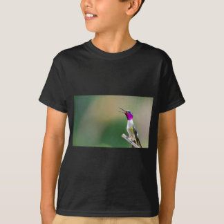 Camiseta Colibri Amethyst de Woodstar
