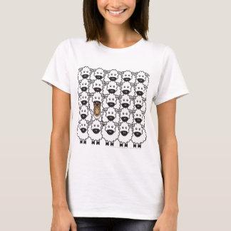 Camiseta Collie liso nos carneiros